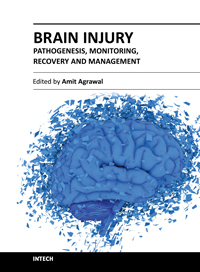 Brain Injury - Pathogenesis, Monitoring, Recovery and Management