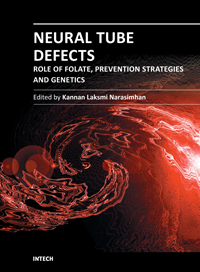 Neural Tube Defects - Role of Folate, Prevention Strategies and Genetics